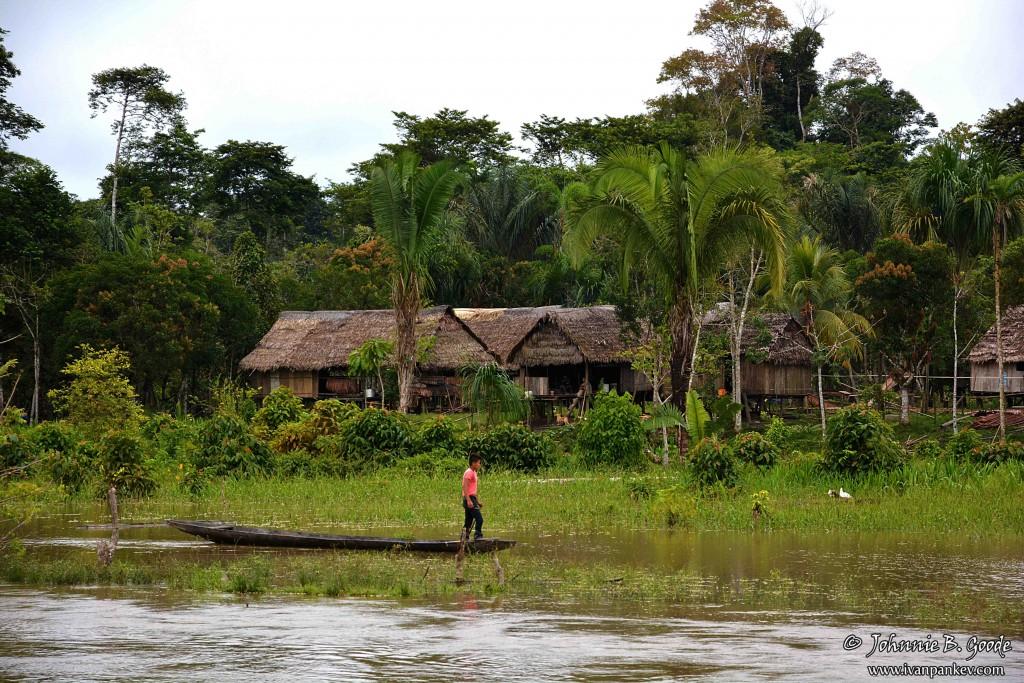 Амазонка 15