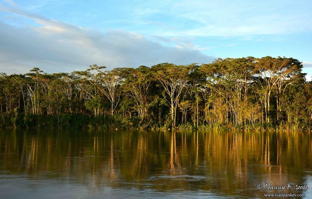 Life_on_the_Amazon_16