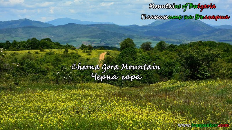 Cherna Gora Mountain Черна гора