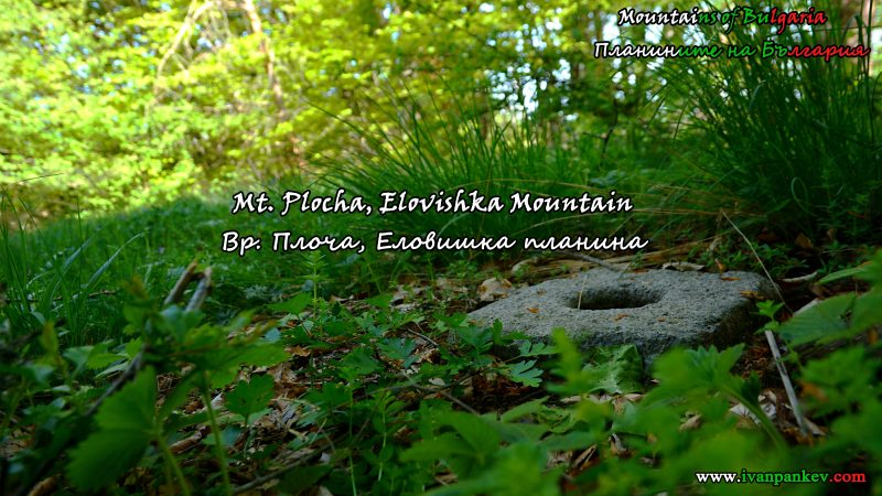 Elovishka Mountain Еловишка планина