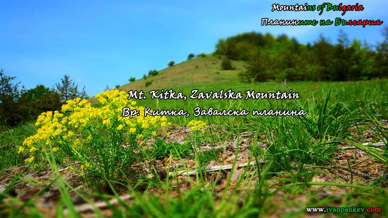 Zavalska Mountain / Завалска планина
