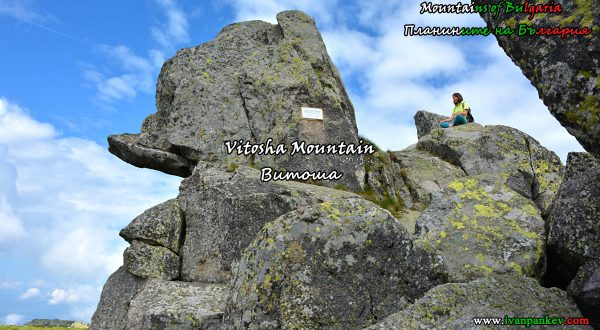 Vitosha Mountain Черни връх