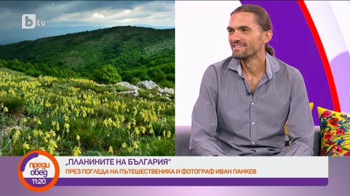 Сутрешен блок Преди обед Деси Стоянова