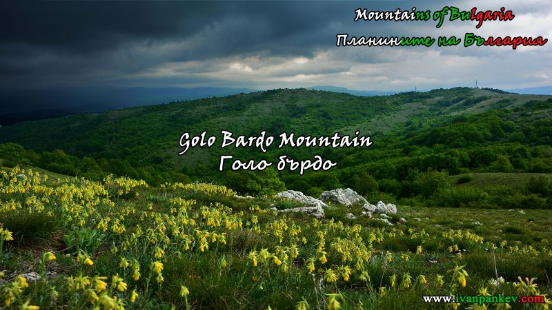 Golo Bardo Mountain Голо бърдо