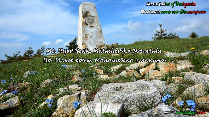Malashevska Mountain / Малашевска планина